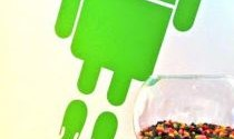 Android 5 Release Date and Release Name Jelly Bean